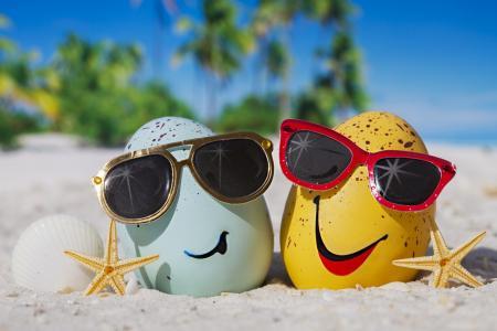 夏天,快乐,海滩,鸡蛋,搞笑,眼镜,可爱,热带