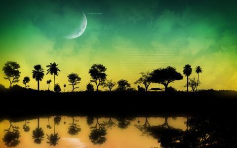树,代码,男子,吊床,月亮,题词,晚上,水