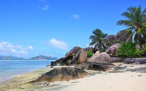 自然,夏天,岛屿,海洋,塞舌尔,塞舌尔