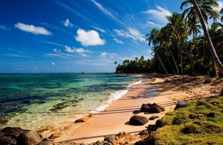 夏天,沙滩,海洋,热带地区,棕榈树,船,美丽,石头,沙子