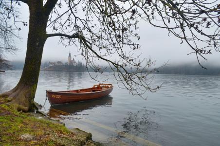 船,湖,岛,早晨,雾,苍白,文字