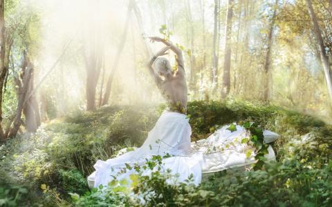 金发,春天,藤,森林,光,创意