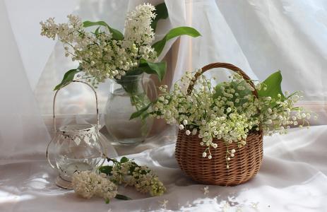 织物,篮子,水罐,鲜花,分支机构,丁香,铃兰,蜡烛