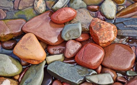 湿,石头,活着