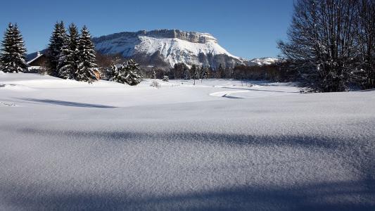 冬天,雪,雪,雪,山,树