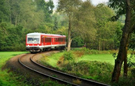 拖车,铁轨,森林,绿色,美丽