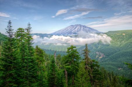 自然,山,森林,美丽,超级照片