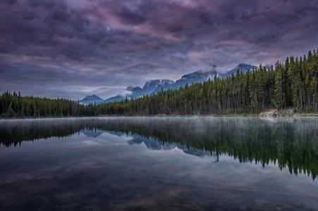 湖,森林,树木,山,天空,云,地平线,全景,美女