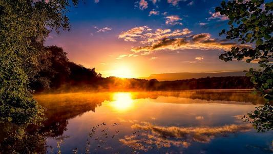 湖,叶子,森林,日落,反射
