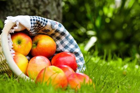 水果,苹果,成熟,餐巾,篮子,红色