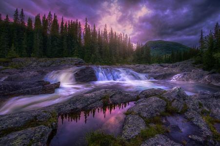 自然,森林,山河,石头,粉红色,晚上,日落