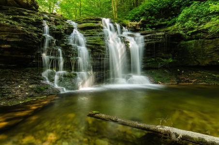 森林,夏天,石头,流,性质