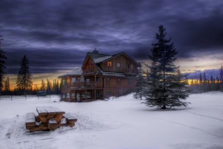 森林,晚上,云,冬天,日落,暮光之城,天空,雪