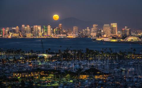 码头,圣迭戈,大都市,夜晚,城市
