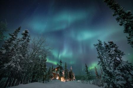 加拿大,自然,景观,雪,冬天,树木,冷杉,山寨,夜晚,光辉