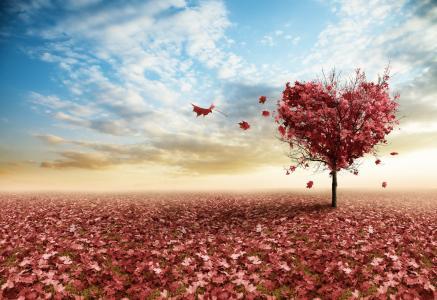 叶子,心脏,粉红色,树,分支机构