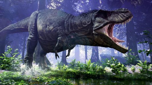 恐龙,霸王龙,雷克斯,3D