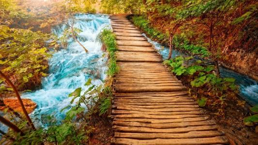 自然,水,线索,美丽
