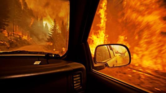 火,森林,火焰,镜子,室内