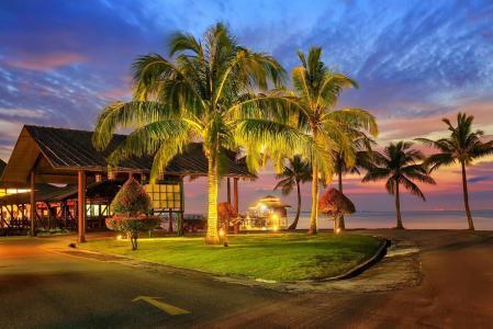 度假村,热带地区,度假,海洋,大自然,棕榈树