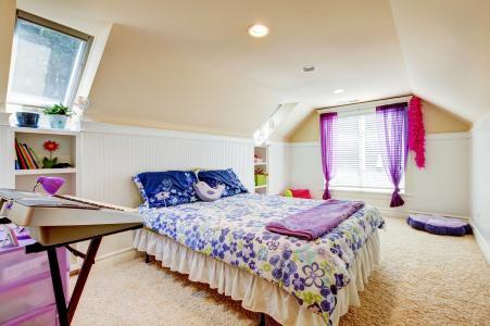 地毯,枕头,床,窗,盆,房间