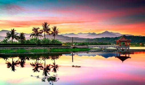 景观,棕榈树,日落,海,日本,反思,天空,桥,山