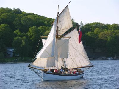 獾,人,海,旅行,帆船