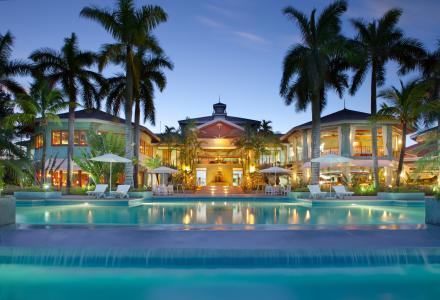 热带,棕榈树,度假村