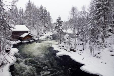 芬兰,冬天,森林,雪,河,房子,美女