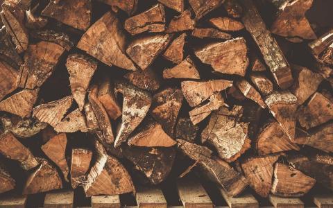 纹理,日志,木材,纹理,木材