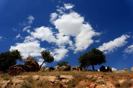天空,云,树,石头,土耳其