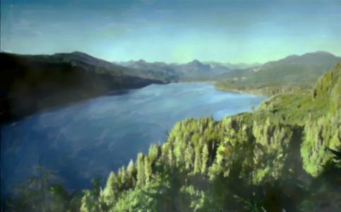 性质,零,森林,手绘
