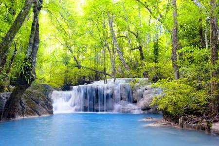 自然,瀑布,河,森林,丛林,美丽,2015年