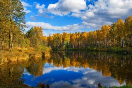 秋天,森林,湖,天空,云,反射