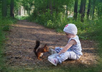 女孩,公园,松鼠,友谊