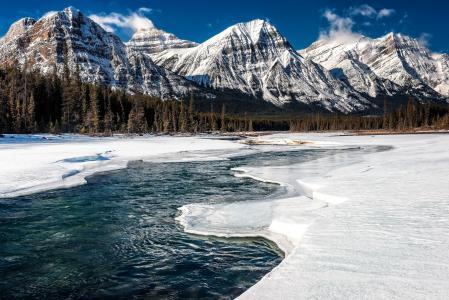 加拿大,公园,山,冬天,景观,雪,性质