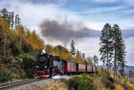 机车,火车,景观,秋天