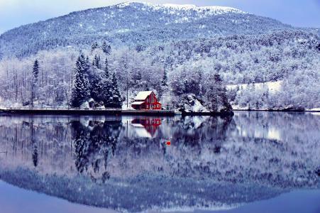 冬天,雪,山,冷杉,房子,芬兰,湖,树