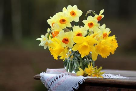 表,餐巾,花瓶,水族馆,鲜花,水仙,春天