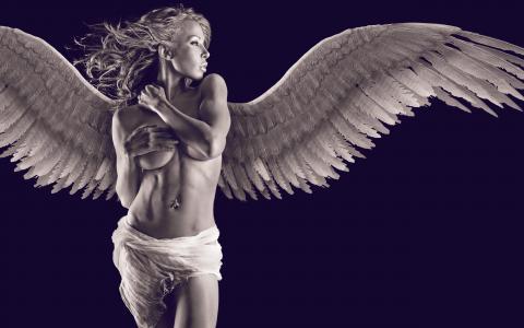 天使,女孩,翅膀,模型