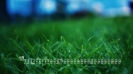 2020年4月清新草地唯美日历壁纸