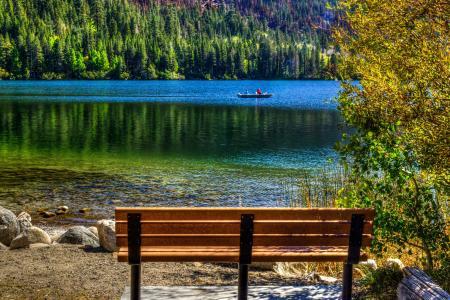 湖,六月湖,加利福尼亚州,板凳,性质