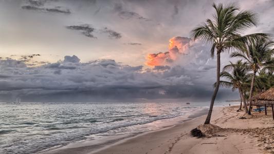 自然,美丽,海,海洋,海滩,棕榈树,天空,云,日落,雷暴,沙,人类发展报告