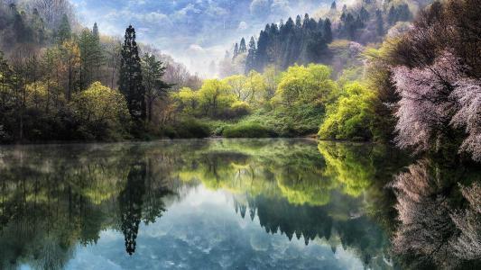 春天,日本,美丽,池塘,山脉