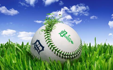 棒球,球,草,绿色的游戏
