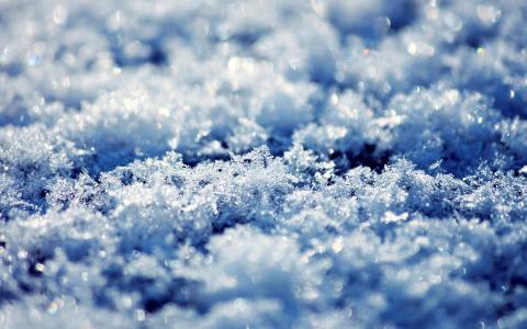 雪花一片片凋落