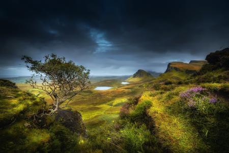 苏格兰,斯凯岛,高地,夏天,八月,小山,山,岩石,谷,树,草,花,湖,云,云