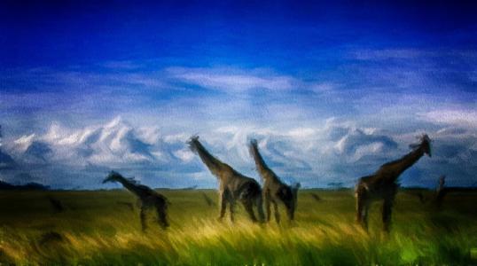 2D,图形,长颈鹿