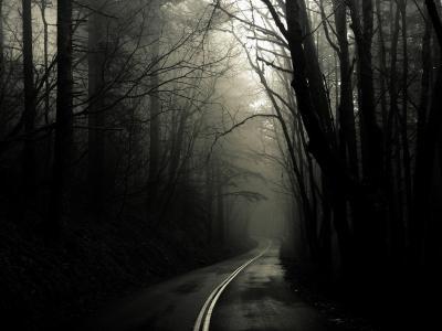 黑色和白色,雾,路,悲伤,孤独