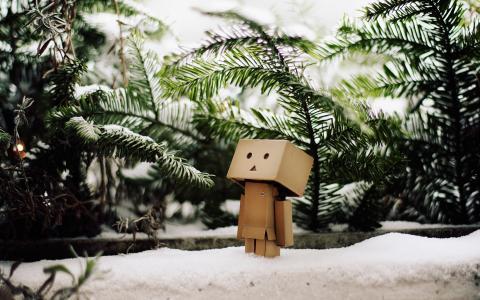 机器人,框,冬天